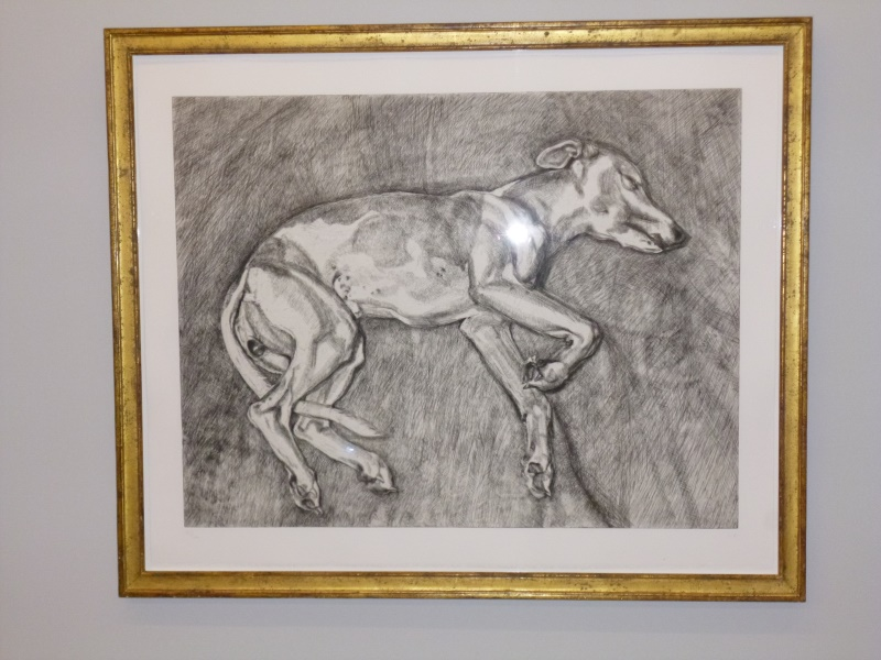 Lucian Freud´s Windhund  Pluto