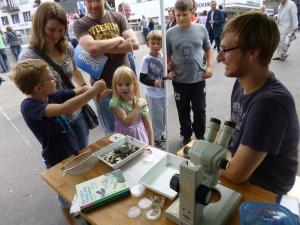 die Kinder untersuchen Kleinlebewesen aus der ieg