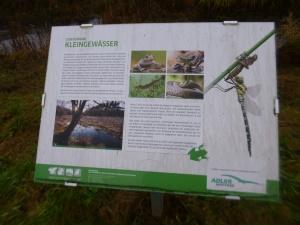 ein Projekt des Naturschutzvereins an der Asdorf (unterhalb Tüschebach)