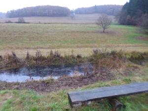 Ebertseifen: Trockenwiese und Feuchtbiotop