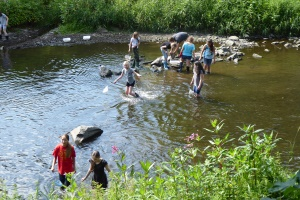 biologische Untersuchung dieses Flussabschnittes