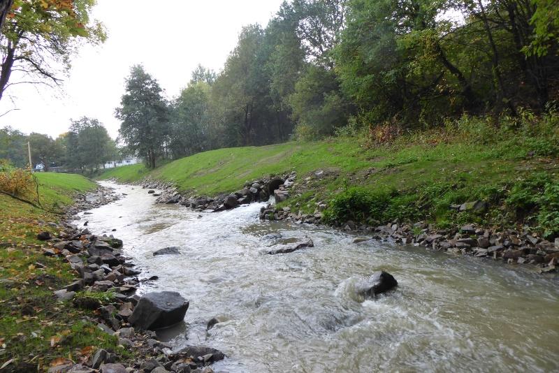 die standortgerechte Uferbeplanzung folgt in Kürze