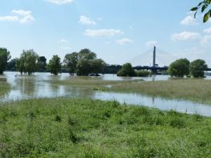 vorne die Siegaue - hinter der Rhein